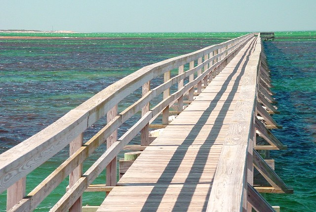 Claudin Poyant - Photo - Boardwalk - resized 1.jpg
